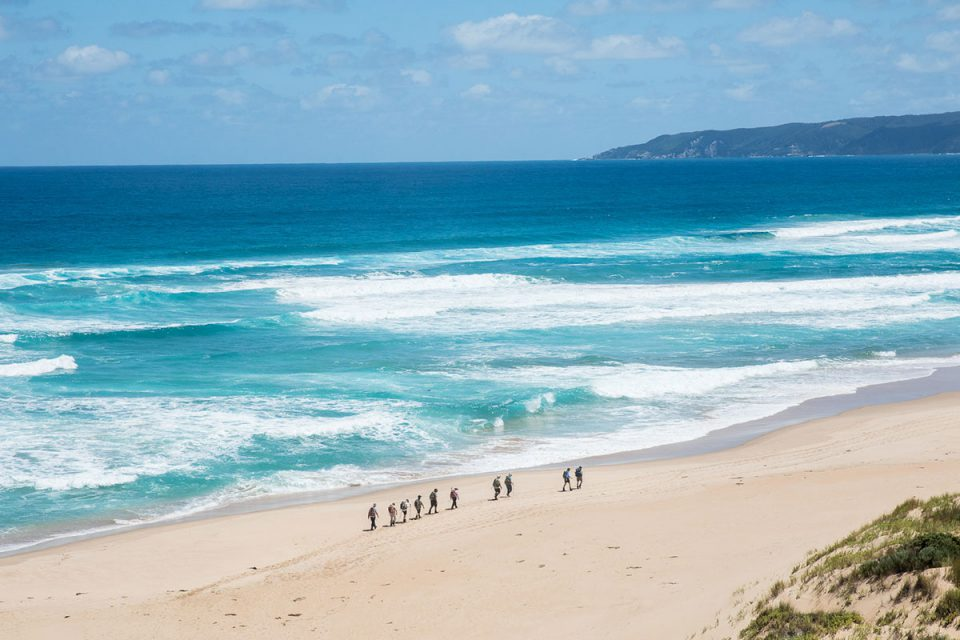 Join other walkers to explore the beautiful Victorian coastline on the Twelve Apostles Lodge Walk.