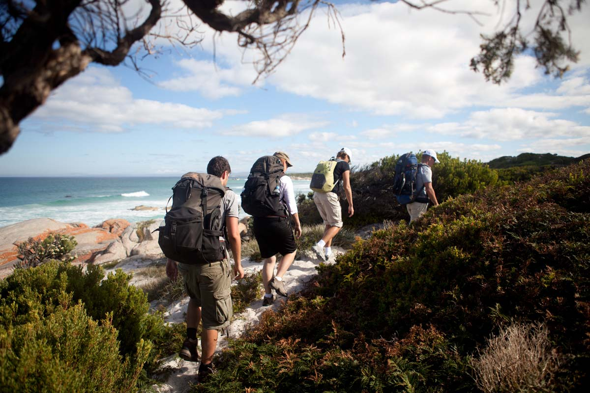Experience ocean views on the Bay of Fires Lodge Walk with Great Walks of Australia.