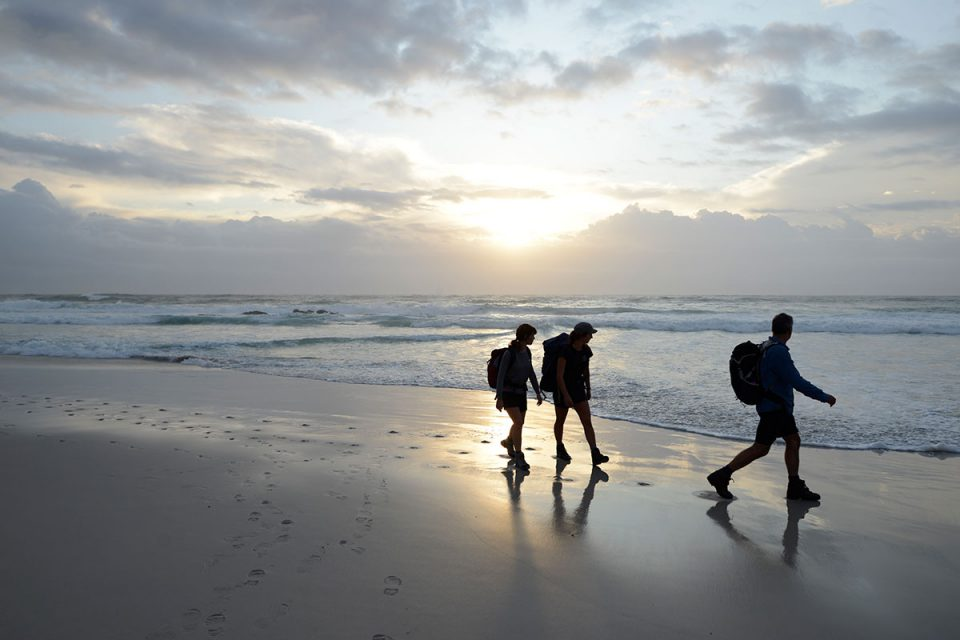On this Great Walk of Australia in Tasmania, walk along beautiful, pristine beaches.