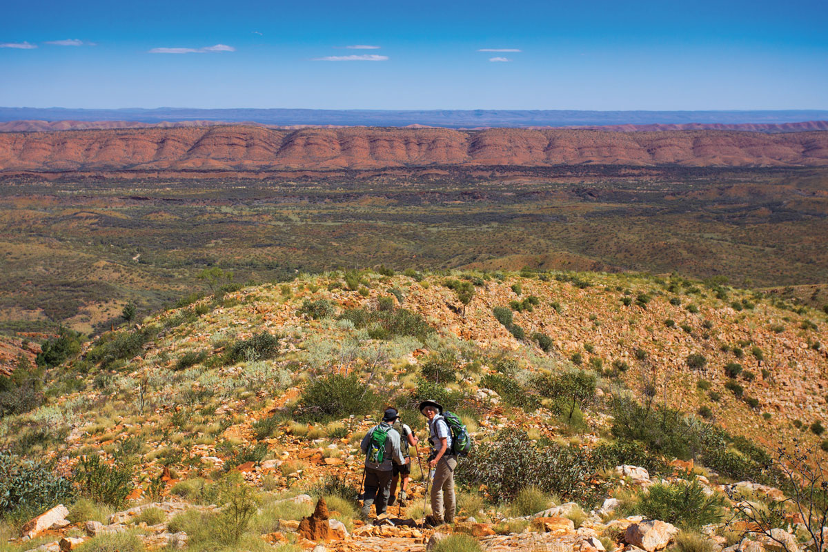 Discover stunning scenery on the Classic Larapinta Trek in the Northern Territory.