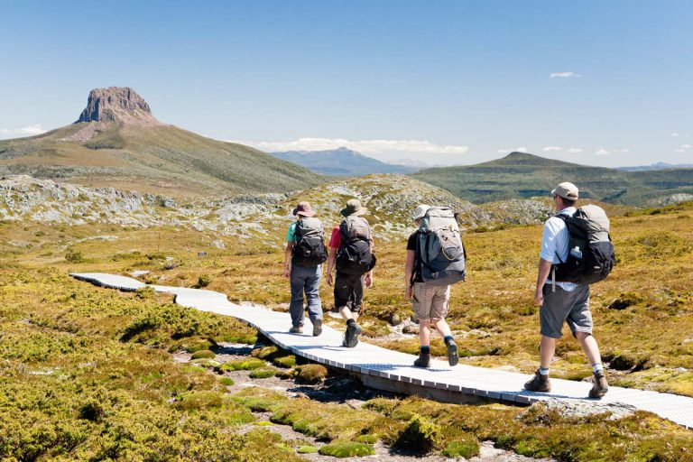 Enjoy spectacular views of Cradle Mountain in Tasmania on the way to Barn Bluff.