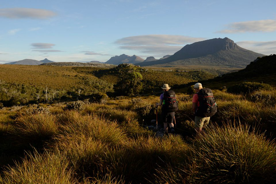 Walk through lush green Tasmanian pastures with Great Walks of Australia.