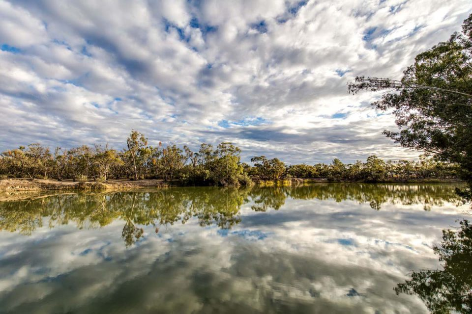 Walk to Chowilla Creek on the Murray River Walk with Great Walks of Australia in South Australia.