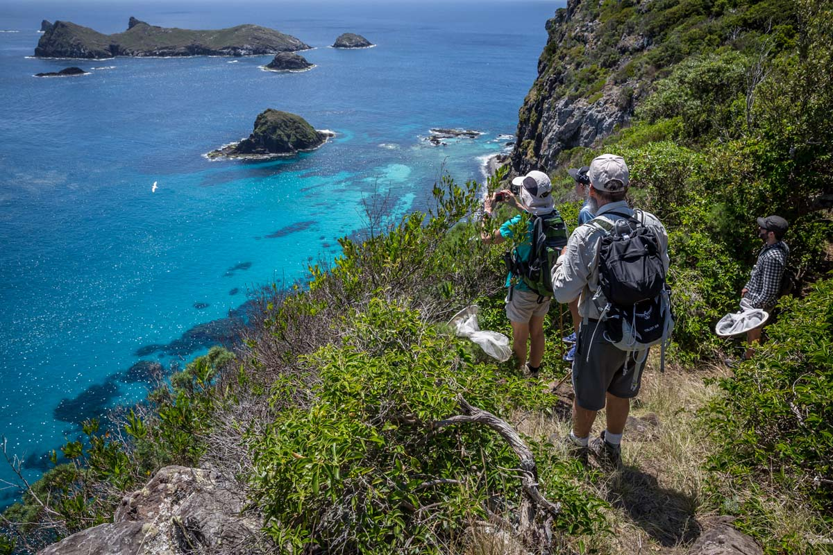 See incredible views of Australia's coastline with Great Walks of Australia on the Seven Peaks Walk.