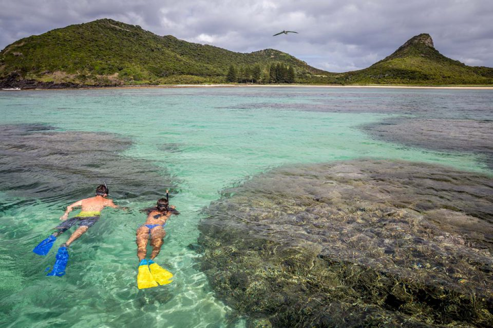 Enjoy snorkelling off the shore of Lord Howe Island during your five day Seven Peaks Walk itinerary.