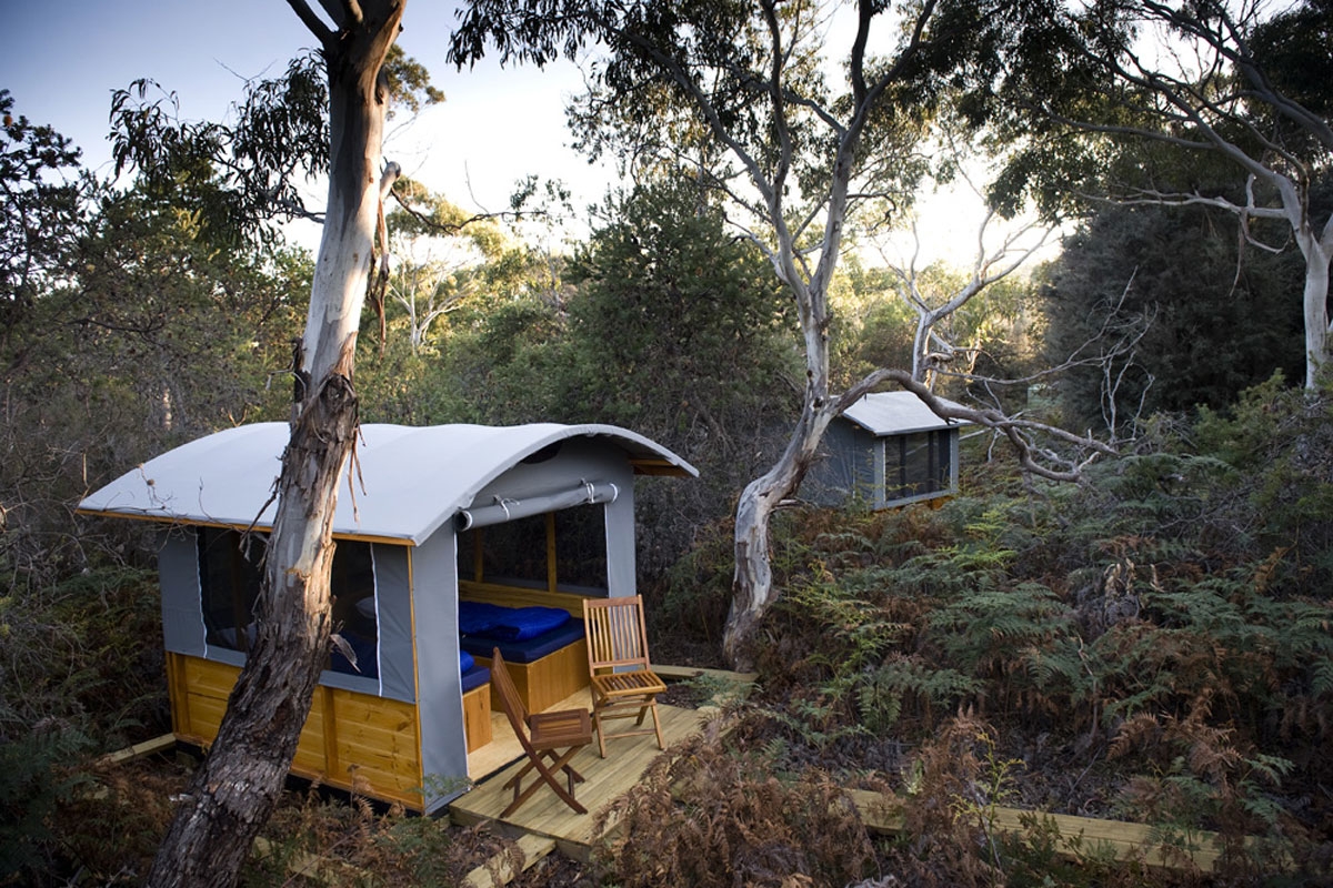 Sleep in a comfortable eco camp at Casuarina Beach on Maria Island, in Tasmania with Great Walks of Australia.