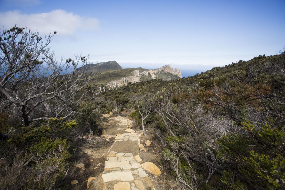 Walk along coastal pathways on the Three Capes Lodge Walk with Great Walks of Australia.
