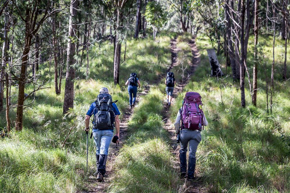 Immersing yourself in nature on Spicers Scenic Rim